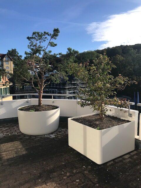 Terrassengestaltung Zürichberg